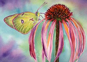 Butterfly sm copy.jpg