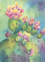 Cactus merged.jpg