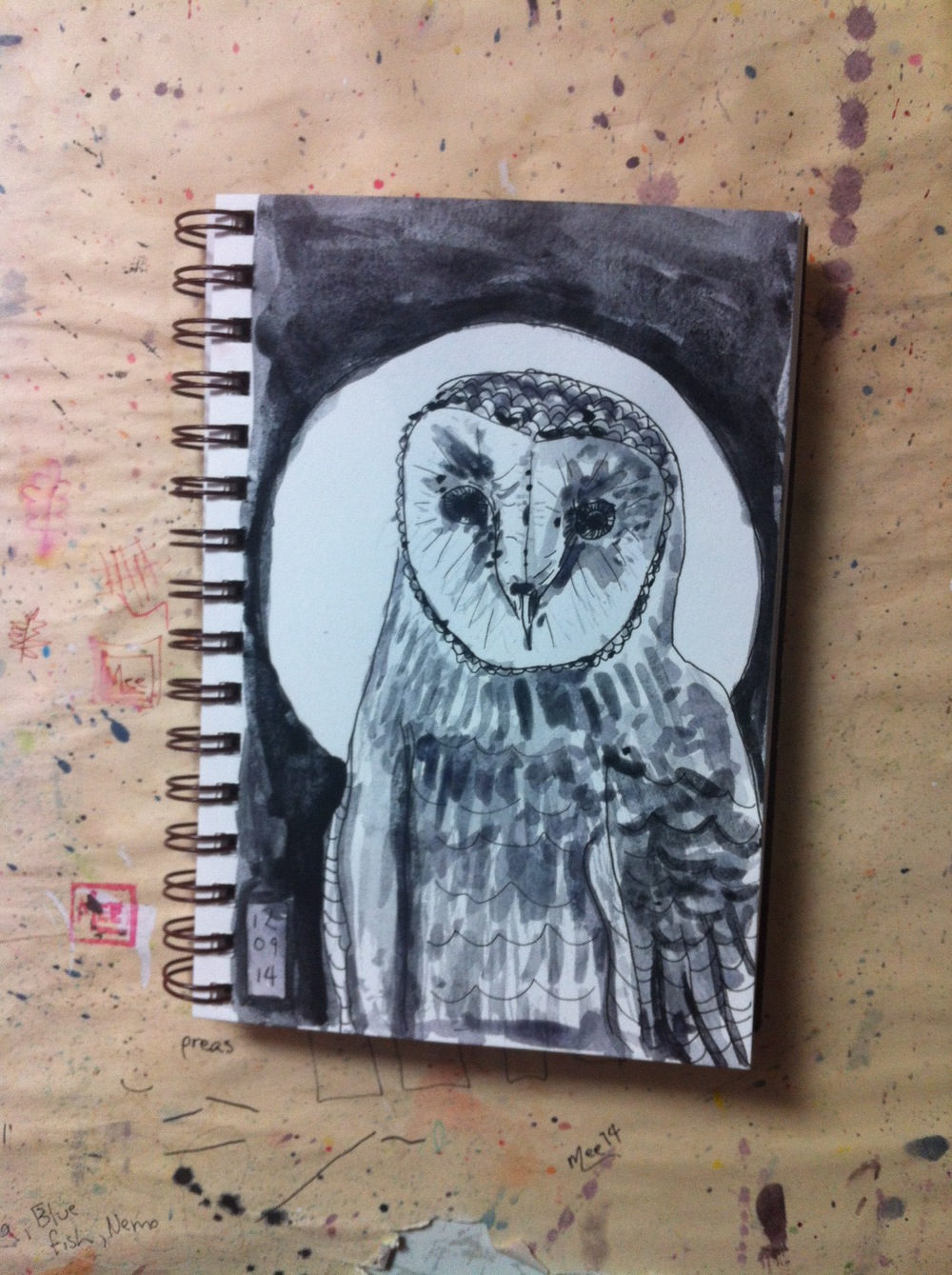 an owl from my imagination and sketches from the Museum of Natural History in NYC