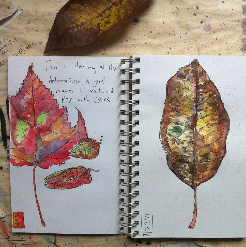 fallsketchbook