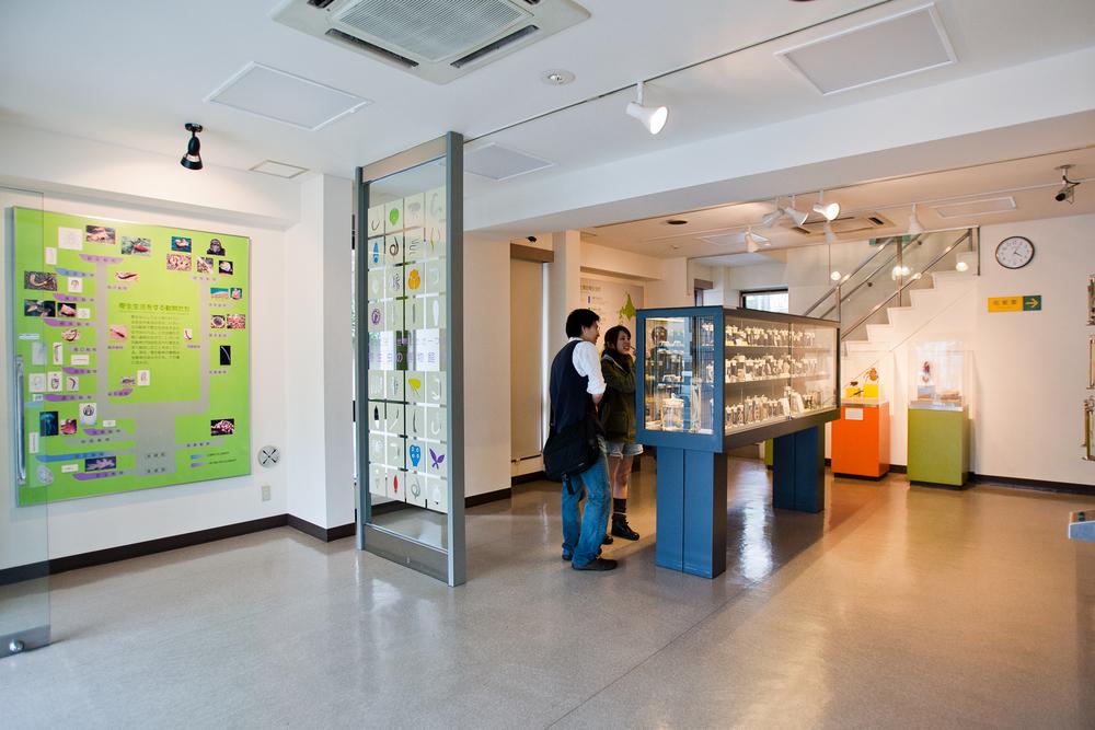 20110423_Meguro_Parasite_Museum_MG_3237.jpg