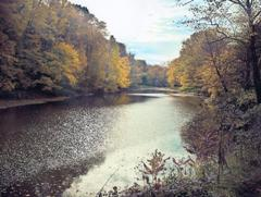 Chagrin River in October  Photo provided by: Gates Mills Land Conservancy