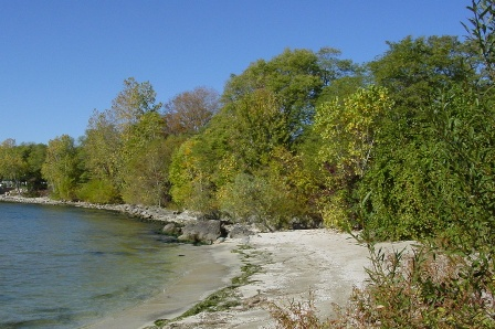 BSC- Middle Bass Island East Point Preserve.jpg
