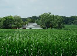 Debbie Alexander's 68 acre in Miami Township, Greene County