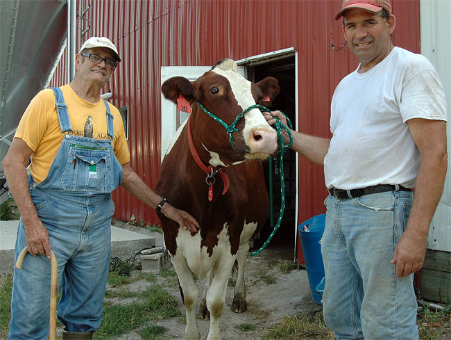 Farmers Kingsley (left) and Jim Semler (right) showed off their award-winning holstein, Scarlett. Their farm, which contains the headwaters of the Jacoby creek, was recently preserved from development by the Tecumseh Land Trust. (Photo by Megan Bachman)