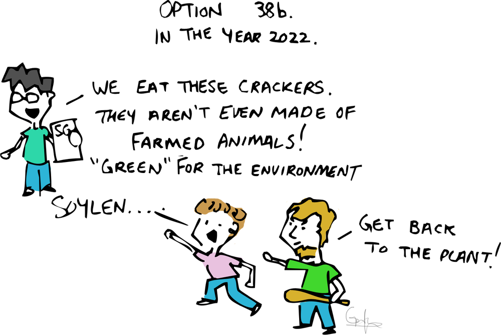 5 - Other Options instead of lab grown meat.png