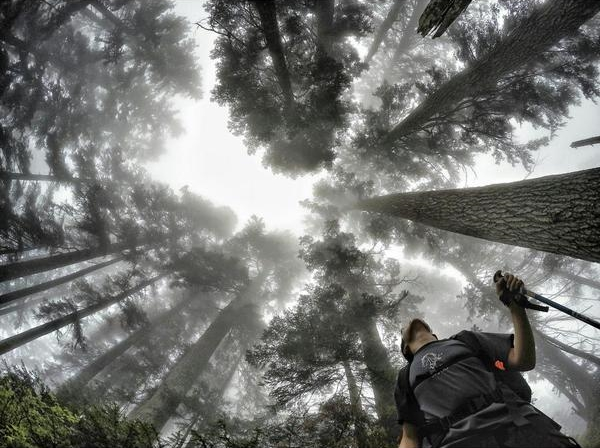 "WINNER: Aaron Dixon. ""Hiking through the north shore forests on our way to Crown Mountain."""