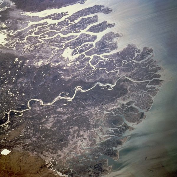 River delta, via  flickr