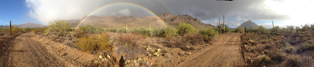 WInter rainbow, near Saguaro National Park West, Tucson, AZ. Click to enlarge.