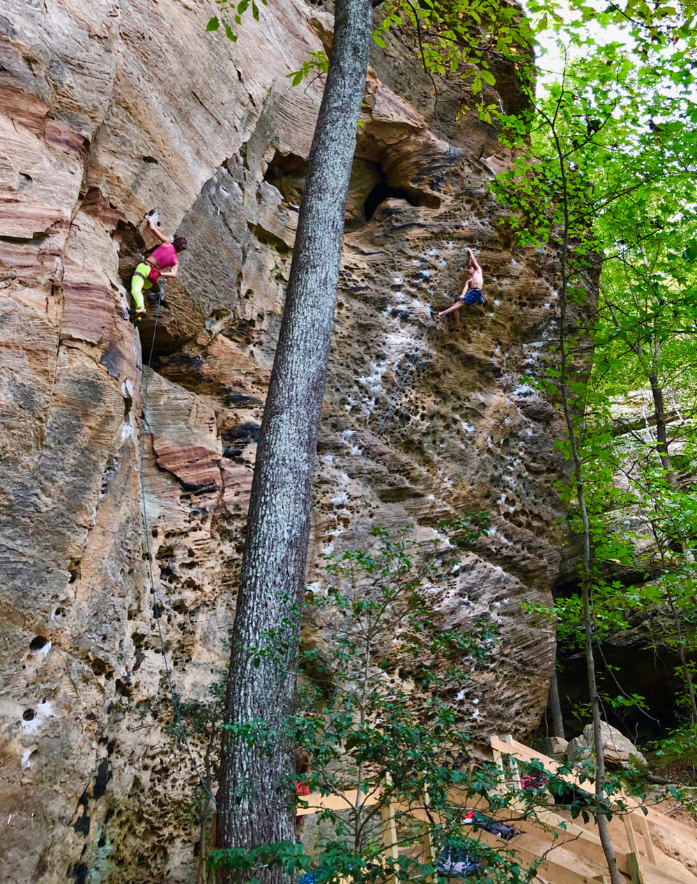 Steep pockets and edges typical of RRG. These routes are at the Chocolate Factory, an excellent, long cliff band near the Motherlode. The climber on the left is on Snozzberries (5.12a) - steep jugs to a hueco rest and a tricky finish. The climber on the right is on Naked (5.12a) - pockets all the way.