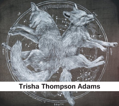 Trisha Thompson Adams, printed posters, animal posters, gift items