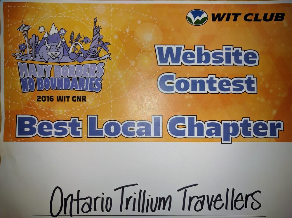 2016 WIT Website Award