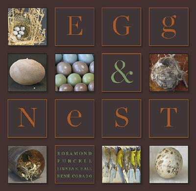 egg and nest book cover brown.jpg