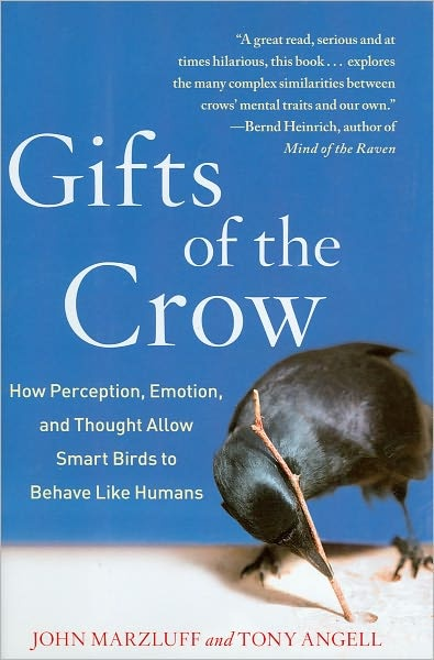 gifts of the crow.jpg