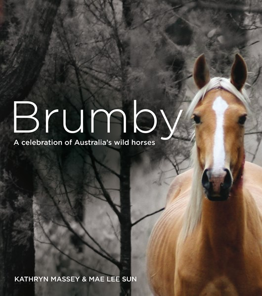 brumby a celebration of australias horse.jpg