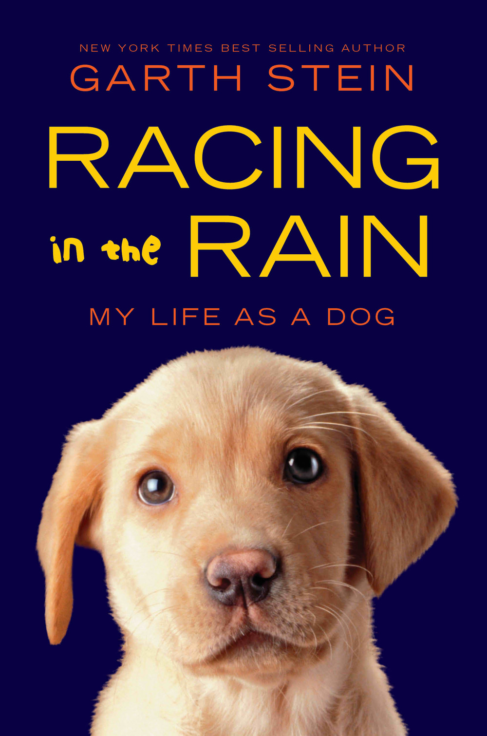 Racing-in-the-Rain2 paperback.jpg