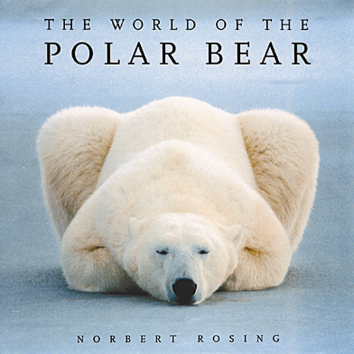 world of the polar bear cover.jpg
