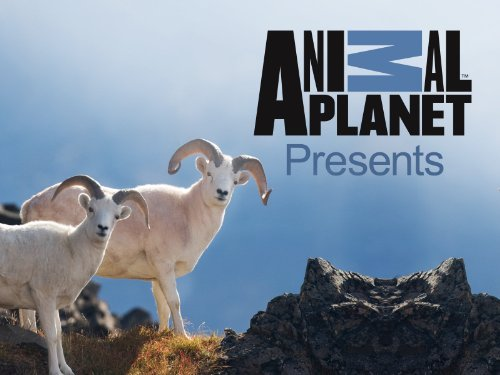 animal planet presents cover.jpg