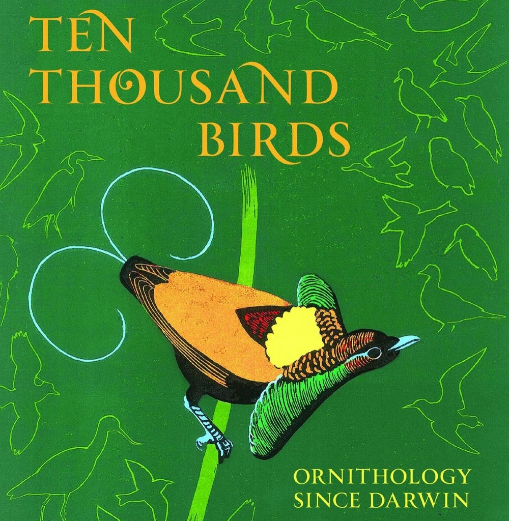 tim Birkhead Ten Thousand Birds.jpg