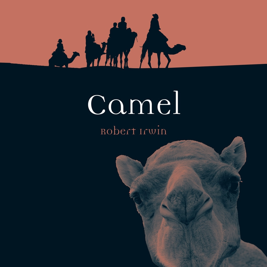 camel by reaktion books.jpg