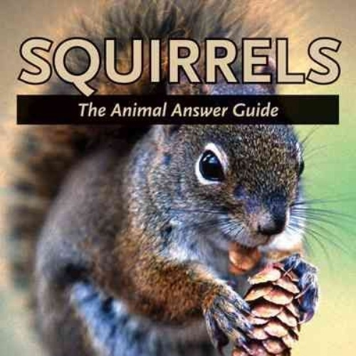 squirrels the guide book.jpg