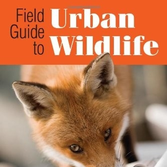 field guide to urban wildlife book.jpg