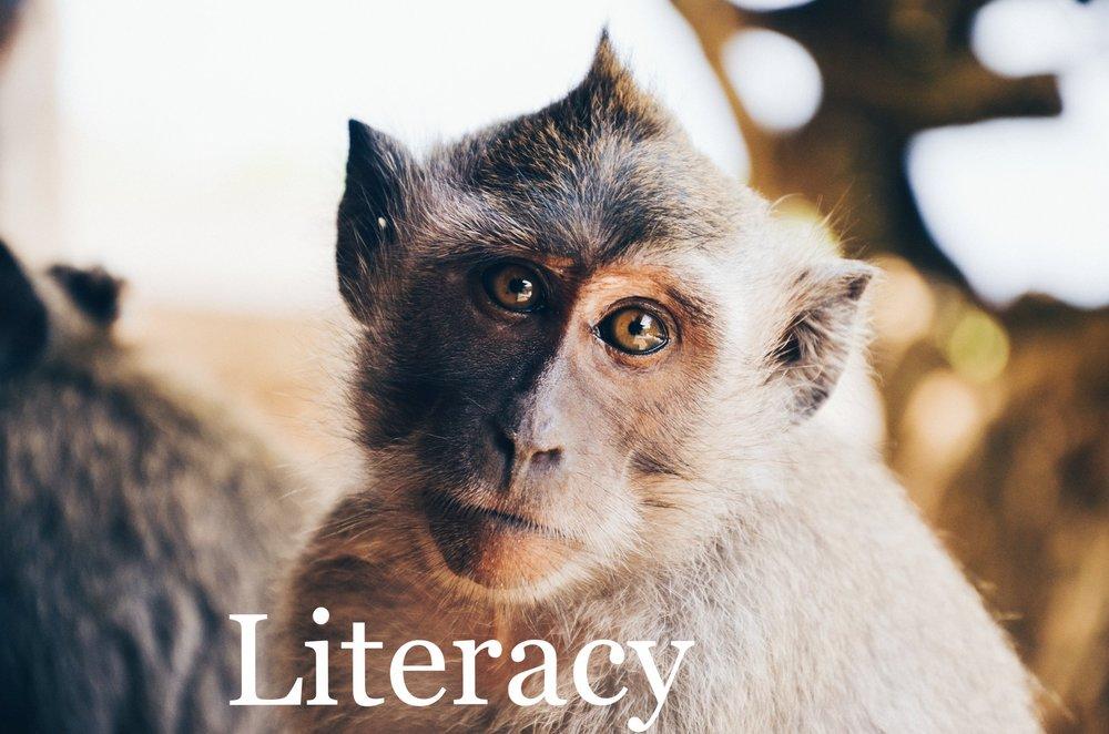 quentin dr primate portrait Up cW.jpg