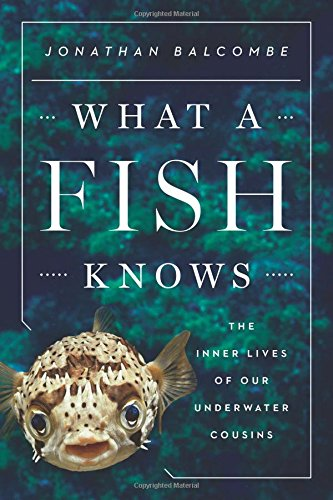 what a fish knows what we can learn from our underwater cousins Jonathan Balcome Alibris