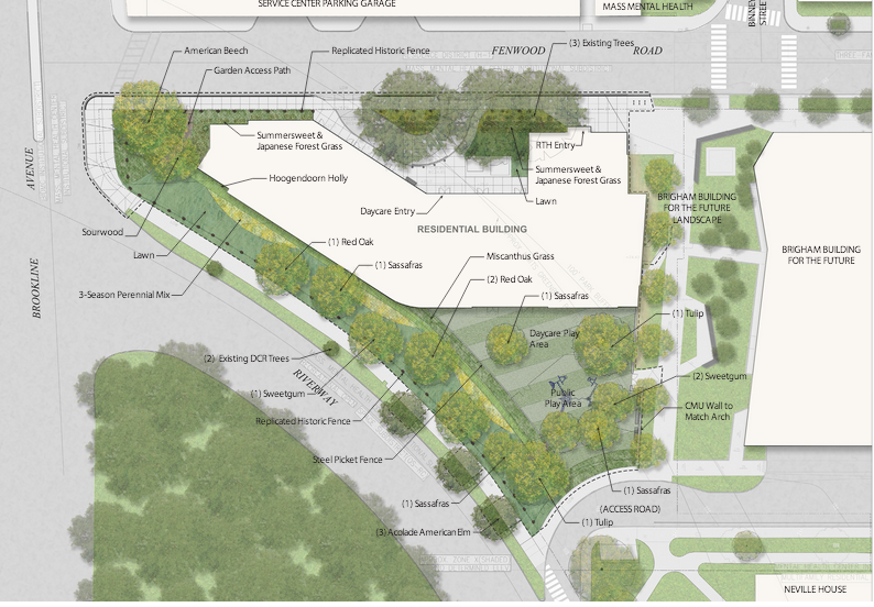 Overall site plan and neighborhood context
