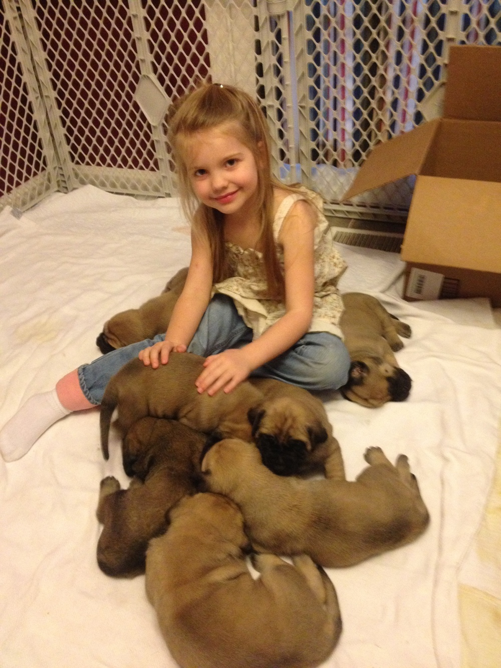 Leah with Clara pups 2013.JPG