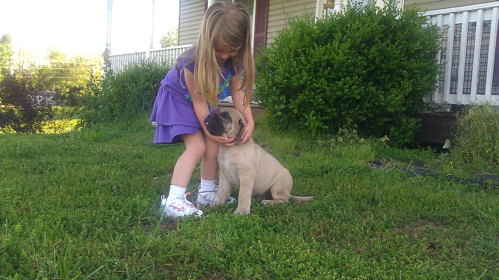 Leah with a Kirra 2012 pup.jpg