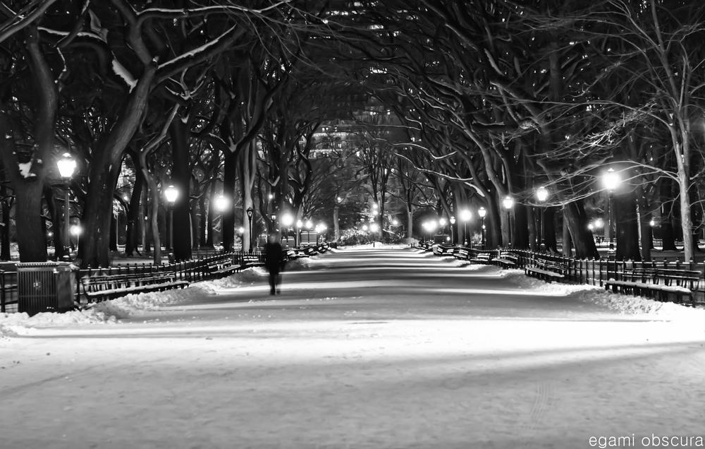 central park mall.jpg