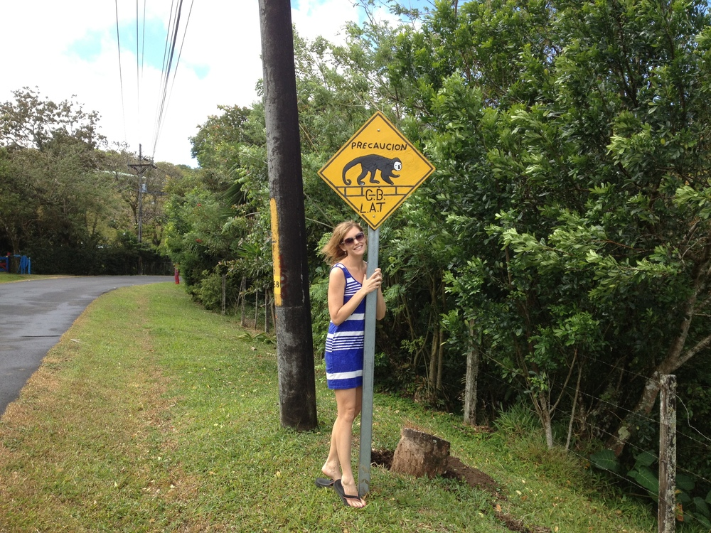 Sloth Sign.JPG
