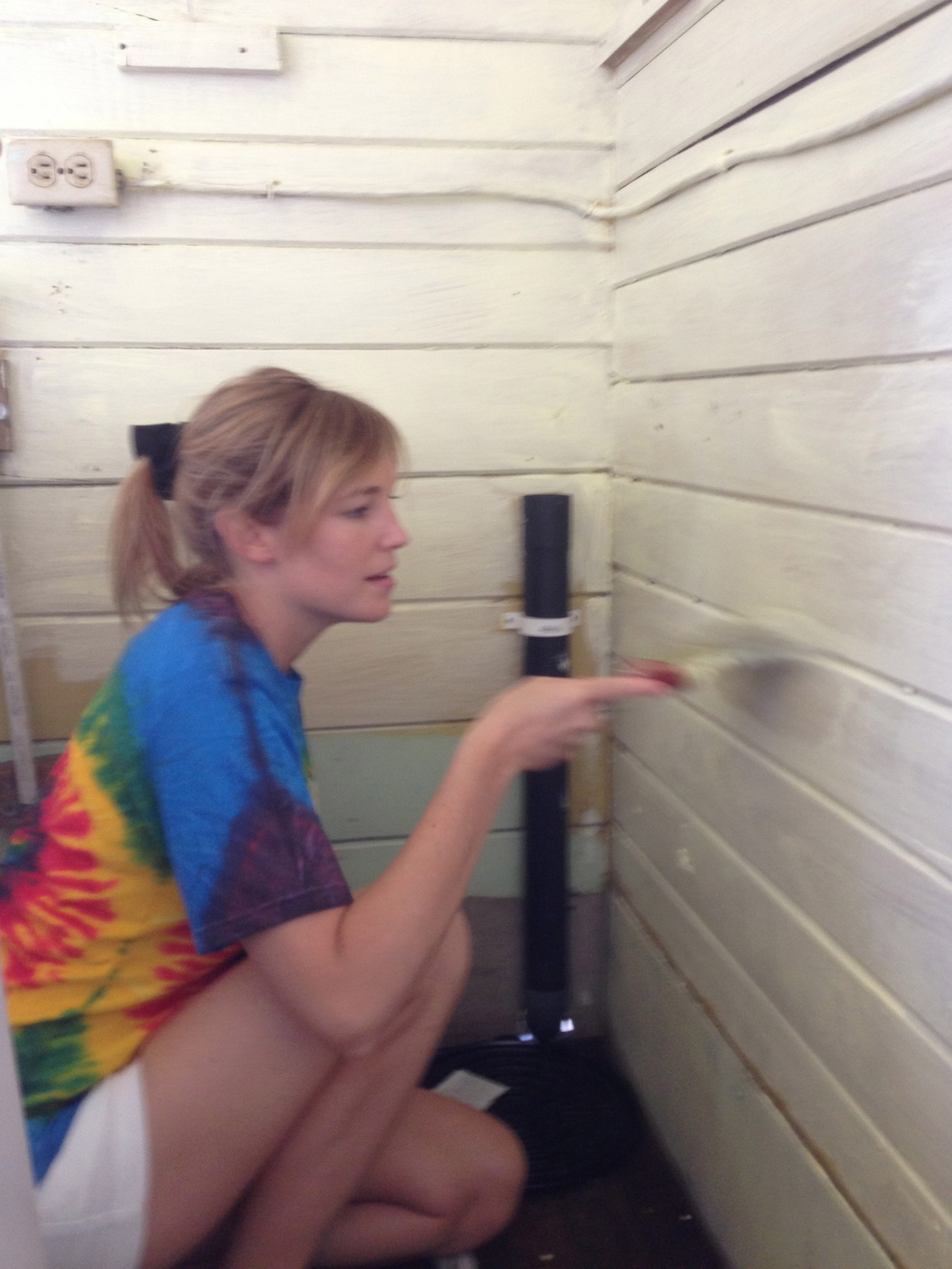 Lucinda Anne (Luci Butler) Painting Charity Work