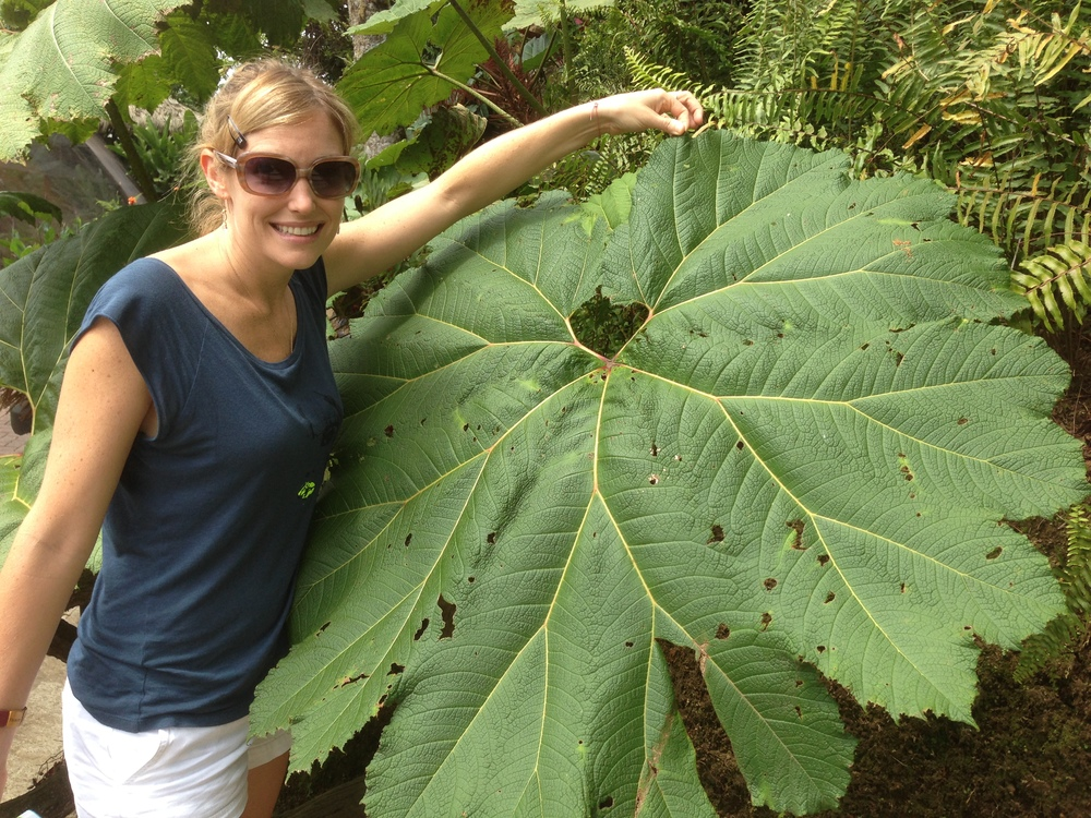 Luci Butler with Giant Leaf at La Paz Waterfall Gardens Costa Rica