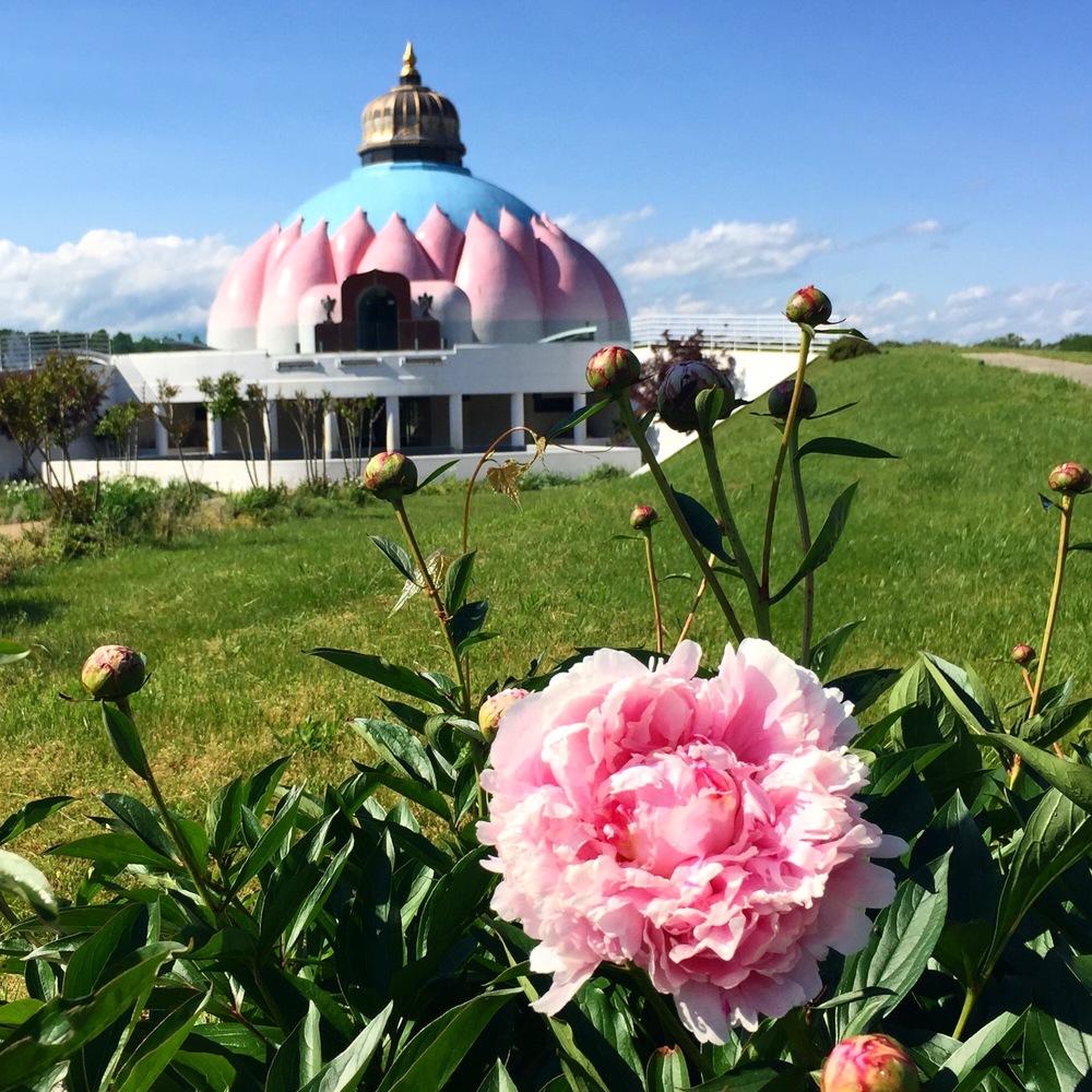 Lotus Temple, Yogaville, VA