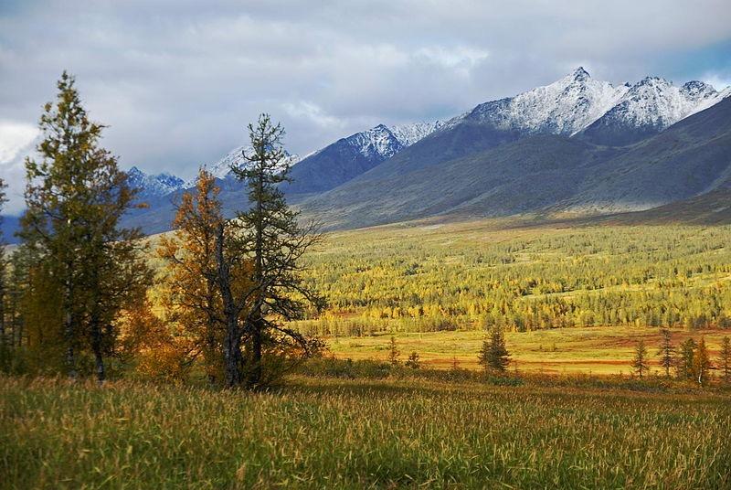 russia_landscape_186_3.jpg