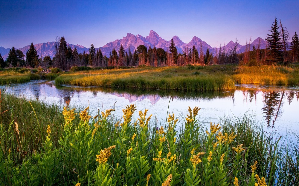 grand-teton-national-park-wyoming-usa-nature-2560x1600-wallpaper95544.jpg