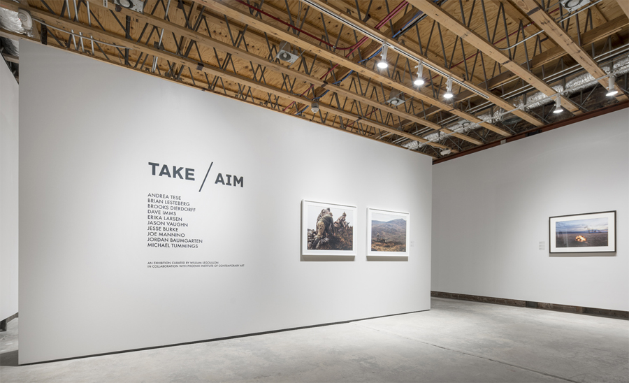TAKE AIM | Curation Project | Arizona State University | Northlight Gallery | Phoenix, AZ, USA