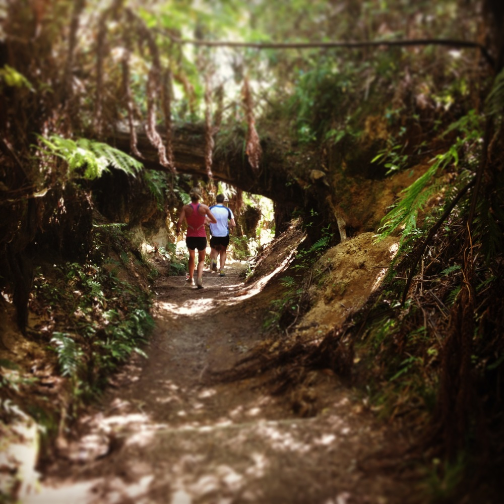 Whakarewarewa Forest med Nikki, Cameron, Tom och Micke