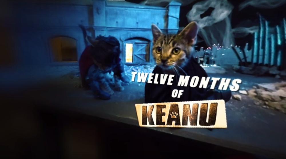 Warner Bros: Keanu: 360 Experience
