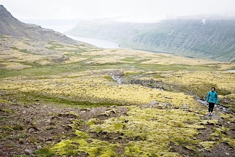 Iceland-2018-0168.jpg