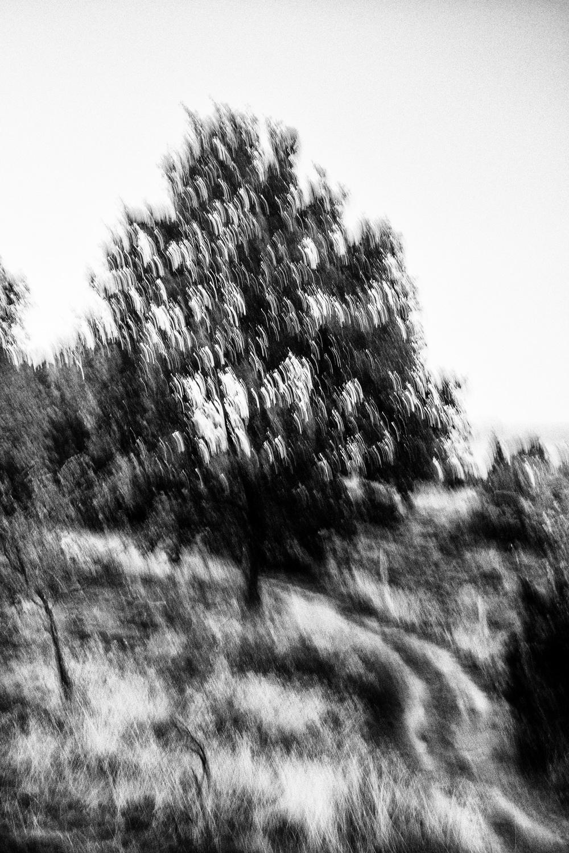 20150918-JensRohde-Kursus paa Molslab-70.jpg