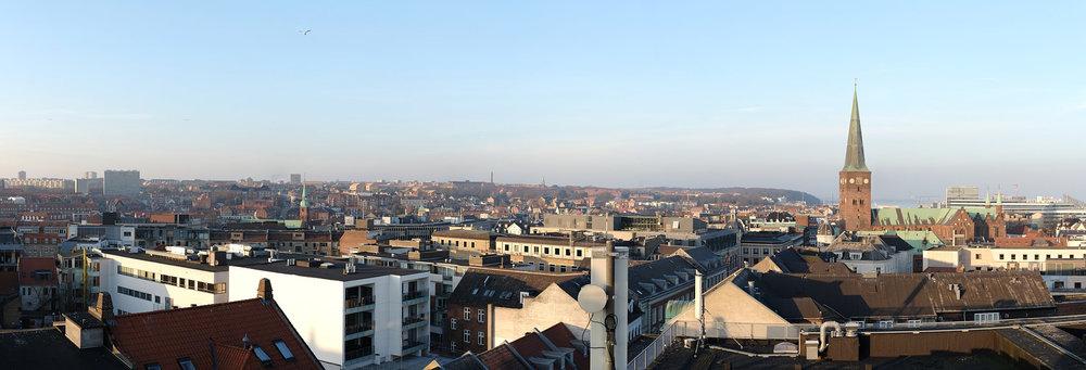 20190226-Aarhus-060.jpg