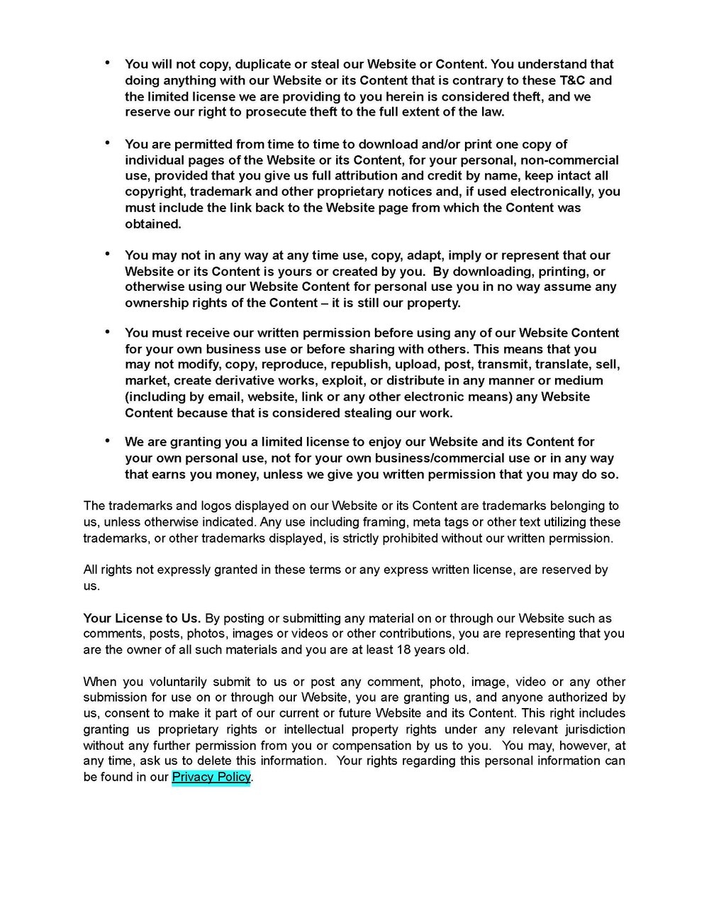 diy-website-terms-and-conditions-gdpr (1)_Page_2.jpg