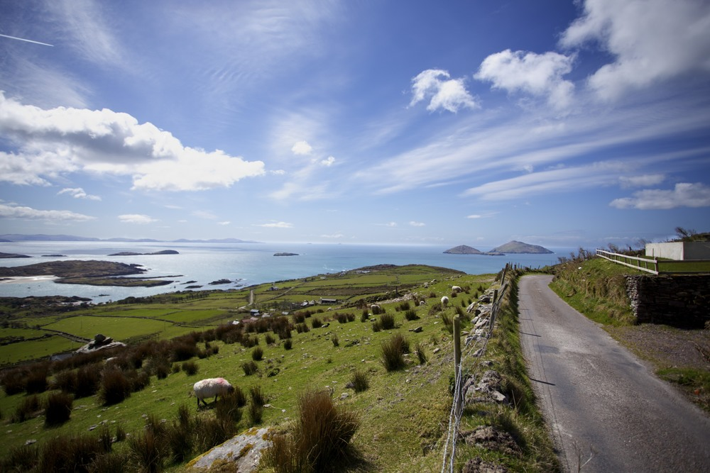 ringofkerry_21_tpace.jpg