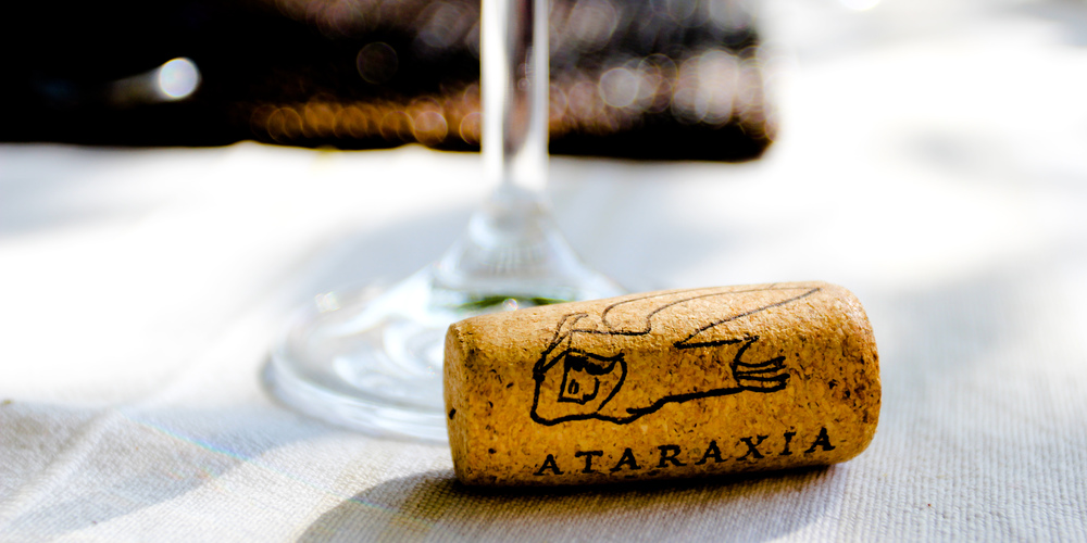 Wine glass & cork