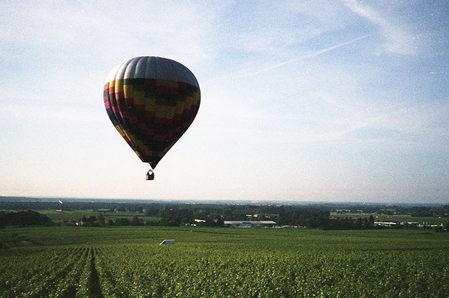 Low flying hot air ballon over the Corton vineyards. #hotairballoon #yashica35mf #buyfilmnotmegapixels #analogphotography #filmphotography #bourgogne #vineyard #grandcru #adayatwork #winemaking #burgundy #agfavista200 #noedits #nofilter #developedathome #homedeveloped