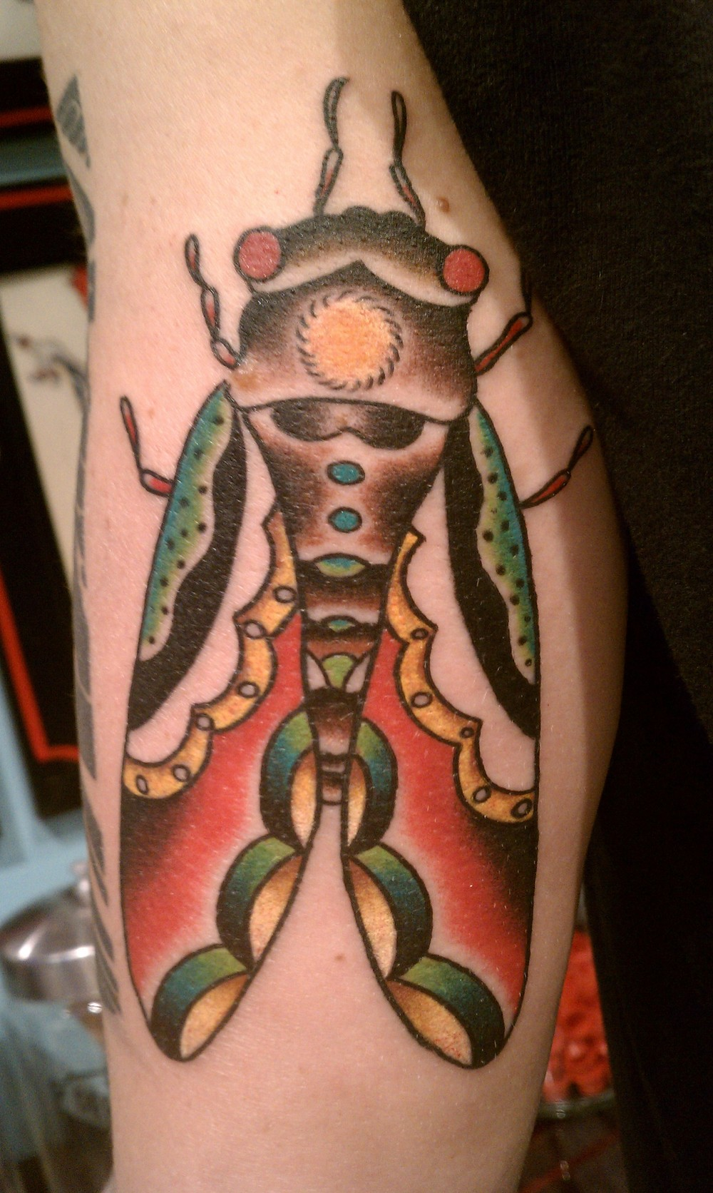 Traditional fly tattoo by Tracy Zumwalt