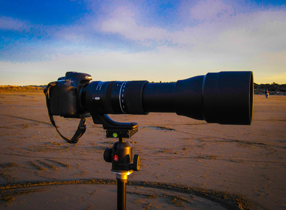 Got to love a really long lens.